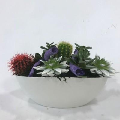 Centro de cactus base blanca
