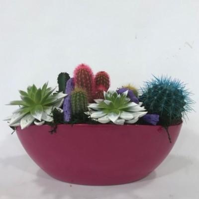 Centro de cactus base rosa