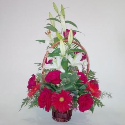 Cesta de mimbre en flor variada con, lilium, rosas y gerberas, mas verdes variados. (sujeto a modificaciones según stock y temporada)